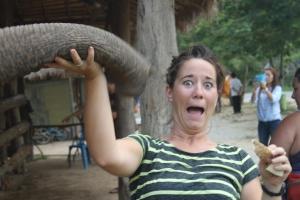 A crazy elephant trunk almost got me